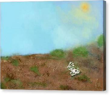 No Man's Land Canvas Print