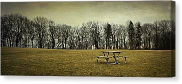 No More Picnics Canvas Print by Scott Norris