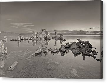 No Movement Canvas Print by Jon Glaser