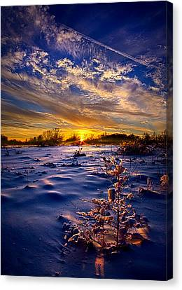 No Regrets Canvas Print by Phil Koch