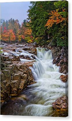 No Swimming Rocky Gorge Albany Nh Canvas Print by Jeff Sinon