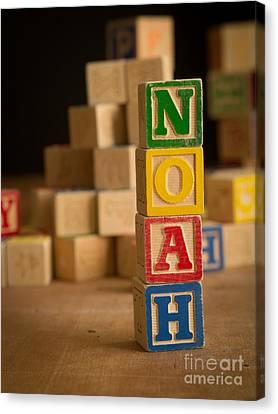 Noah - Alphabet Blocks Canvas Print by Edward Fielding