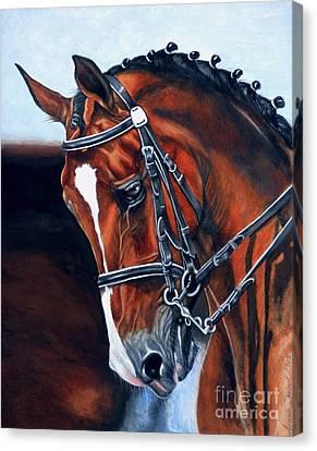 Watercolor. Equine. Bridle Canvas Print - Nobility by Amanda Hukill