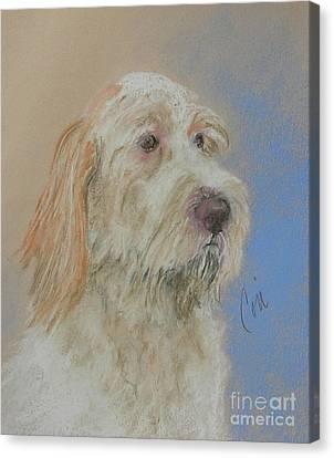 Noble Hunter Canvas Print