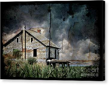 Nobody's Home Canvas Print by Lois Bryan