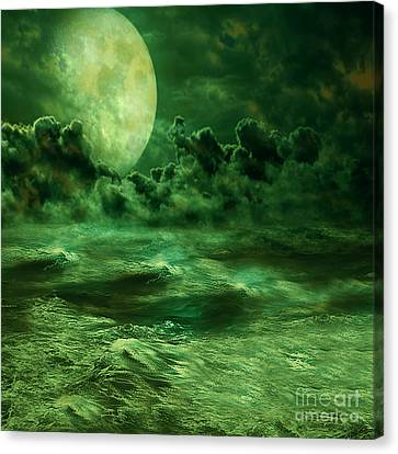 Nocturnal Canvas Print by Ester  Rogers