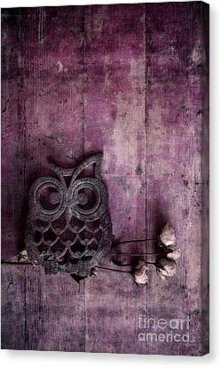 Metalic Canvas Print - Nocturnal In Pink by Priska Wettstein
