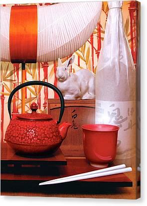 Noguchi Lamp Canvas Print by Danny Evans