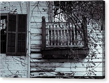 Nola A10c Canvas Print by Otri Park