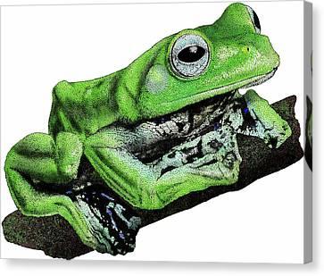 Norhayatis Flying Frog Canvas Print