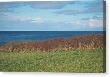 Canvas Print featuring the photograph North Beach by Laurie Stewart