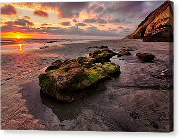 North Beach Rock II Canvas Print by Peter Tellone
