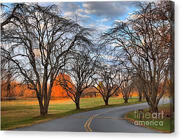 North Carolina Sloan Park Sunset Canvas Print by Adam Jewell