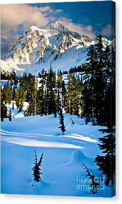 North Cascades Winter Canvas Print by Inge Johnsson