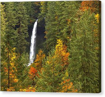 North Falls Canvas Print