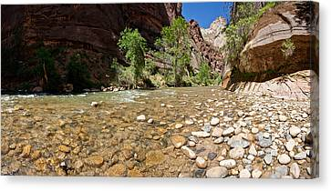 North Fork Of The Virgin River, Zion Canvas Print by Panoramic Images