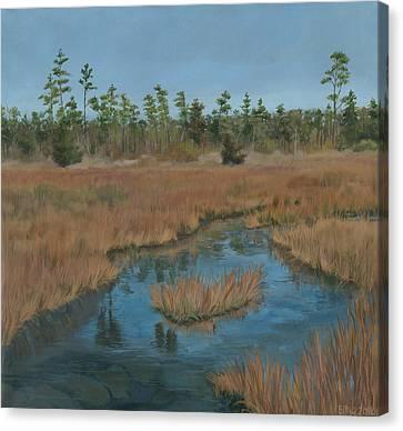 North Landing State Park Va Canvas Print by Edward Williams