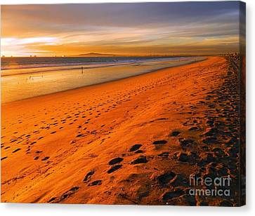 North Orange County Canvas Print by Everette McMahan jr
