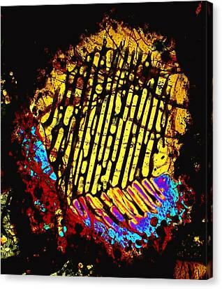 Neon Fingerprint Canvas Print