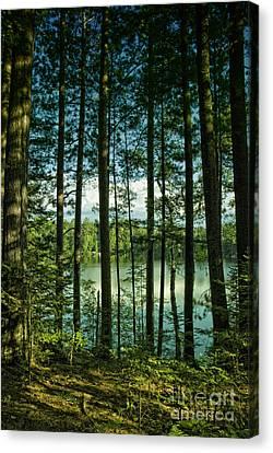 North Woods Lake Canvas Print