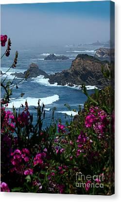 Northern Coast Beauty Canvas Print by Patrick Witz