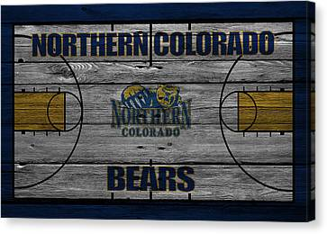 Northern Colorado Bears Canvas Print