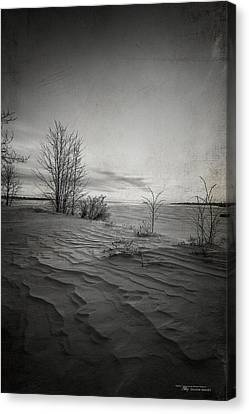 Kim Klassen Texture Canvas Print - Northern Desert by Dustin Abbott