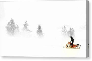 Northern Exposures.. Canvas Print by Al  Swasey