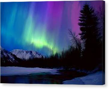 Northern Lights Canvas Print by Shere Crossman