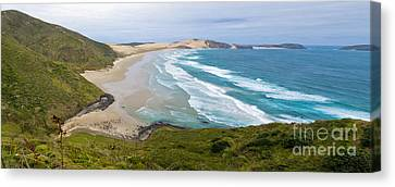 Northland Sand Beach Near Cape Reinga New Zealand Canvas Print by Stephan Pietzko