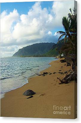 Northshore Beach Canvas Print