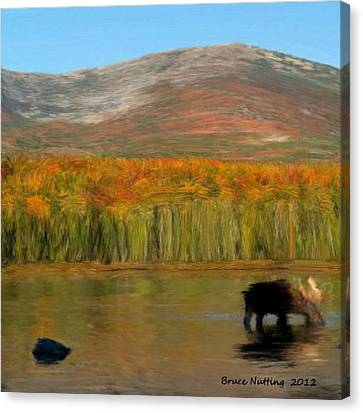 Canvas Print featuring the painting Northwest Moose by Bruce Nutting