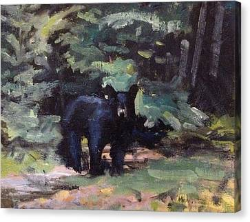 Canoe Canvas Print - Northwoods Visitor by Spencer Meagher