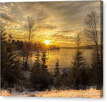 Norway Hedmark Canvas Print by Rose-Maries Pictures