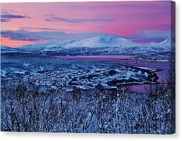 Norwegian Arctic Twilight Canvas Print by David Broome
