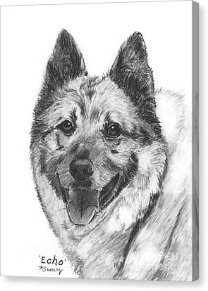 Norwegian Elkhound Sketch Canvas Print