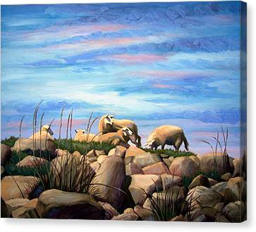 Norwegian Sheep Canvas Print by Janet King