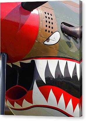 Nose Art I Canvas Print by Timothy McIntyre