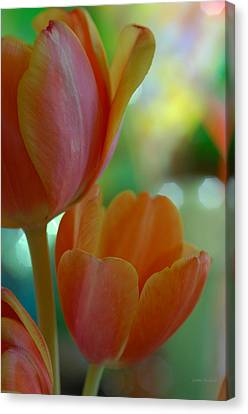 Nothing As Sweet As Your Tulips Canvas Print