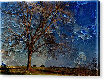 Nothing But Blue Skies Canvas Print by Jan Amiss Photography