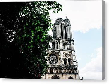 Restaurant Es Canvas Print - Notre Dame De Paris by Gianfranco Evangelista