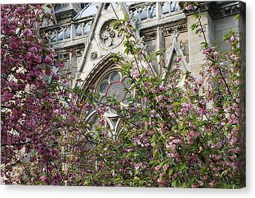 Canvas Print featuring the photograph Notre Dame In April by Jennifer Ancker