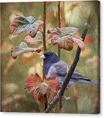 November Canvas Print by Angie Vogel