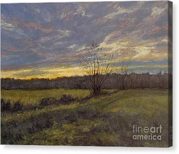 November Sunset Canvas Print by Gregory Arnett