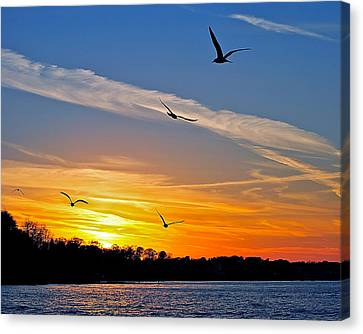 November Sunset Ia Canvas Print by Frozen in Time Fine Art Photography