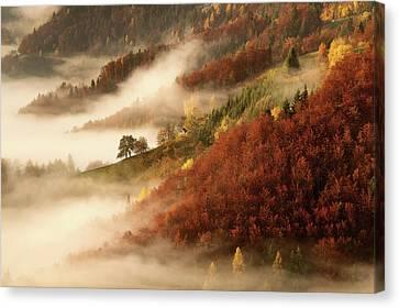 Haze Canvas Print - November's Fog by