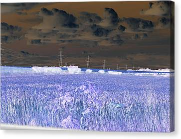 Nuclear Sky Canvas Print by David King