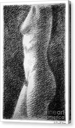Nude Female Torso Drawings 6 Canvas Print by Gordon Punt