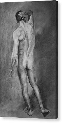 Canvas Print featuring the drawing Nude Male by Rachel Hames