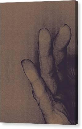 Number Three Canvas Print by Bob RL Evans